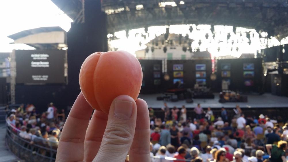Abricot Jazz.