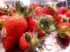 [C'est de saison!] Les premières fraises.