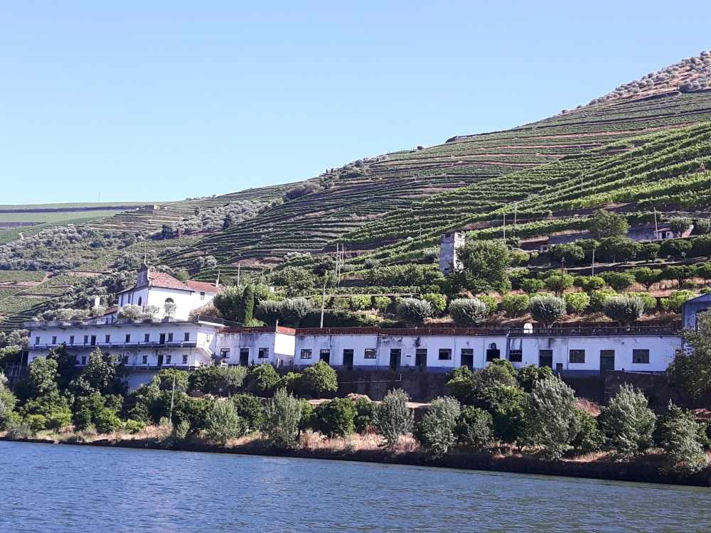 Une Quinta au bord du Rio Douro