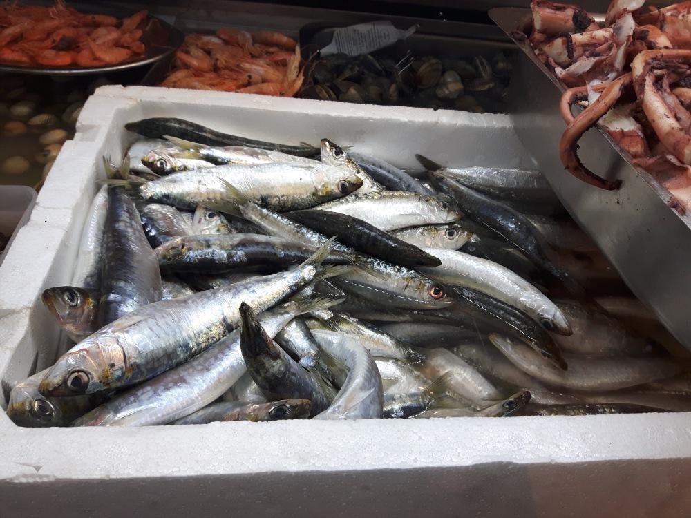Sardines...