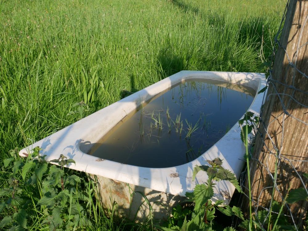 On se prend à rêver d'un bain de nature ;-) !!